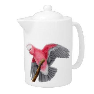 Tetera rosada del loro de Cockatoo de Galah