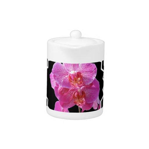Tetera rosada floreciente de las orquídeas