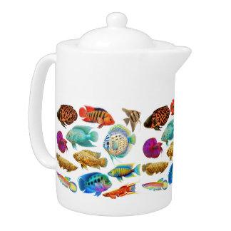 Tetera tropical de agua dulce de los pescados del