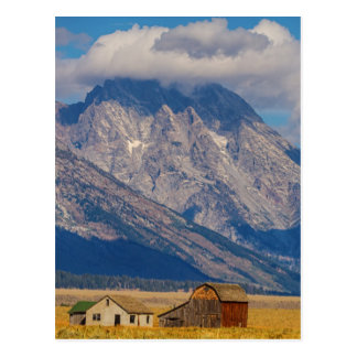 Teton Country Landscape Postcard