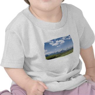 Teton Fence Kids Shirt