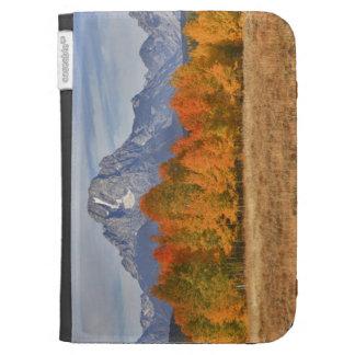 Teton magnífico NP soporte Moran y árboles del ál