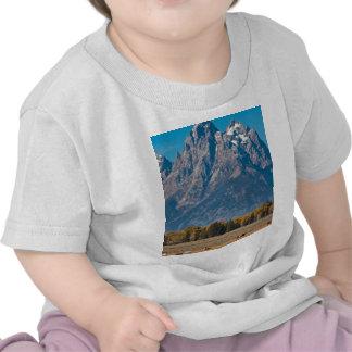 Teton magnífico camisetas