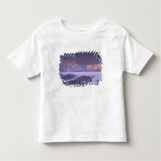 Teton Range from Snake River Overlook, Grand Toddler T-shirt
