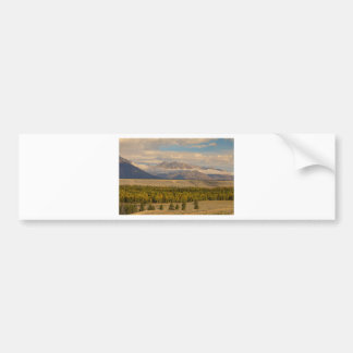 Teton Views Bumper Sticker
