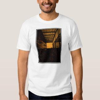 Tetragonal - orange shirt