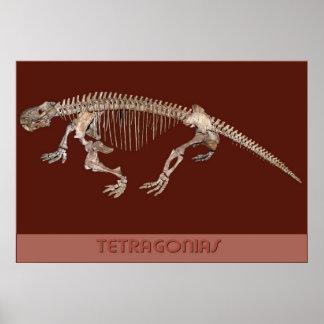 Tetragonias (Synapsid) Print