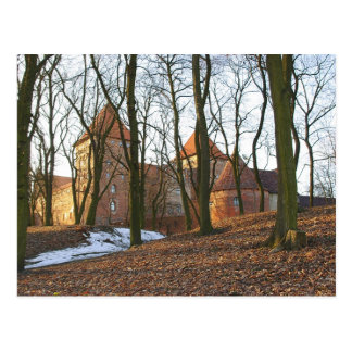 Teutonic Order castle Neidenburg - Postcard