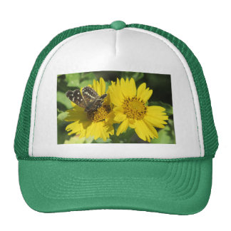 Texan Crescent Butterfly Hat