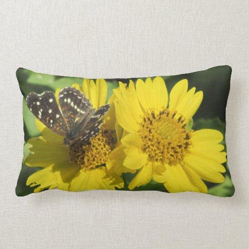 Texan Crescent Butterfly Pillows