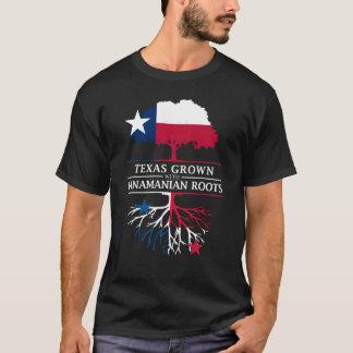 Texan