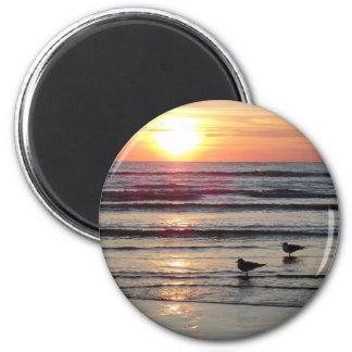 Texas Beach Fridge Magnets