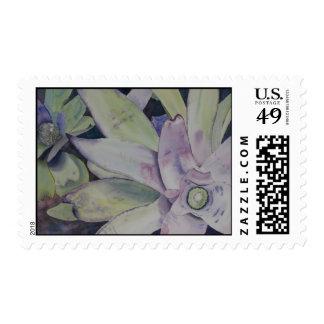 Texas Beauty postage