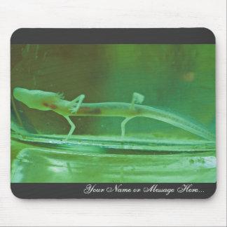 Texas Blind Salamander Mouse Pad
