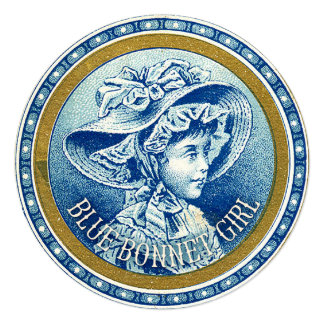 Texas Blue Bonnet Girl Vintage Card