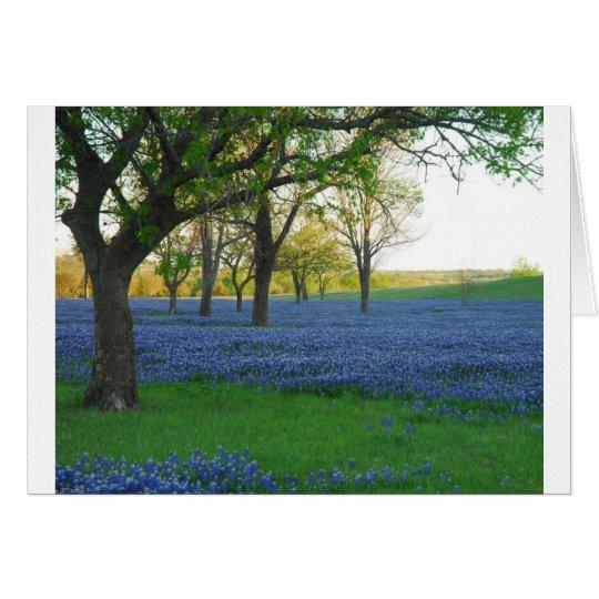 Texas Blue Bonnets Card