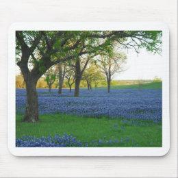 Texas Blue Bonnets Mouse Pad