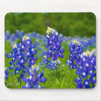 Texas Blue Bonnets mousepad
