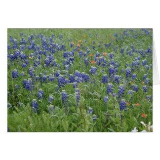 Texas Blue Bonnets Note Cards