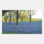 Texas Blue Bonnets Rectangular Sticker