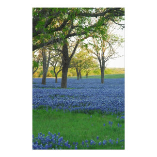 Texas Blue Bonnets Personalized Stationery