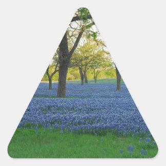 Texas Blue Bonnets Triangle Sticker