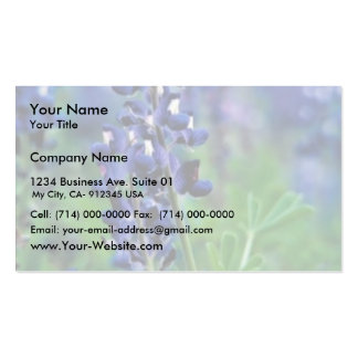 Texas Bluebonnet Double-Sided Standard Business Cards (Pack Of 100)