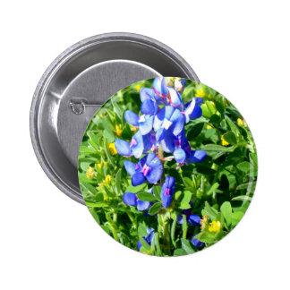 TEXAS BlueBonnet Button