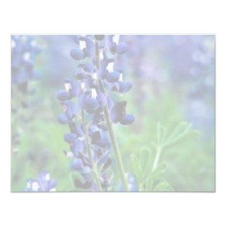 Texas Bluebonnet Card