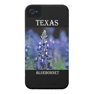 Texas Bluebonnet iPhone 4 Covers
