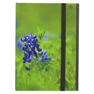Texas Bluebonnet Case For iPad Air