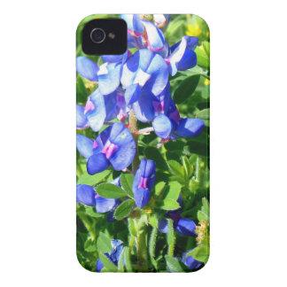 TEXAS BlueBonnet iPhone 4 Case