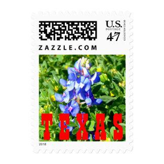 Texas BlueBonnet Postage Stamp