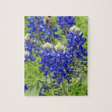 Texas Bluebonnet Spring Wildflowers Jigsaw Puzzle