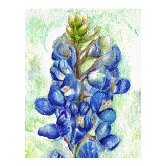 Texas Bluebonnet Wildflower Drawing Letterhead
