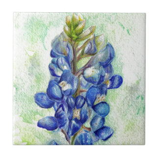 Texas Bluebonnet Wildflower Drawing Tile