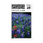 Texas Bluebonnets and Indian Paintbrush Stamp