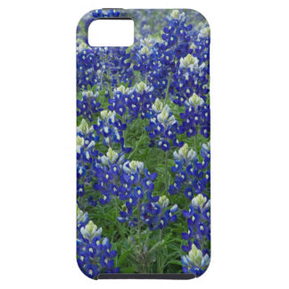 Texas Bluebonnets Field Photo iPhone SE/5/5s Case
