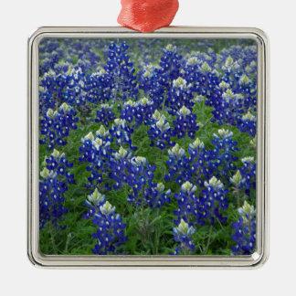 Texas Bluebonnets Field Photo Ornament