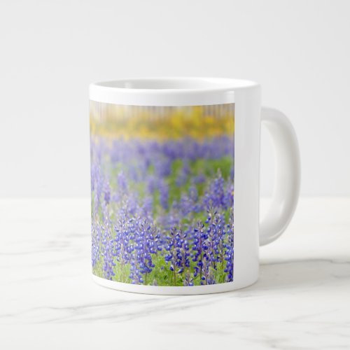 Texas Bluebonnets Giant Coffee Mug