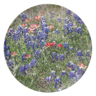 Texas Bluebonnets & Indian Paintbrush Wildflowers Melamine Plate