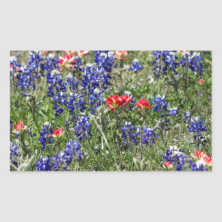 Texas Bluebonnets & Indian Paintbrush Wildflowers Rectangle Stickers