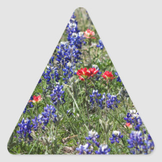 Texas Bluebonnets & Indian Paintbrush Wildflowers Stickers
