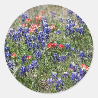 Texas Bluebonnets & Indian Paintbrush Wildflowers Round Sticker