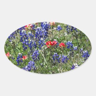 Texas Bluebonnets & Indian Paintbrush Wildflowers Oval Sticker