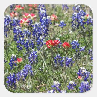 Texas Bluebonnets & Indian Paintbrush Wildflowers Sticker