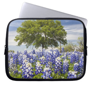 Texas bluebonnets(lupinus texensis) and oak computer sleeve