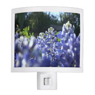 Texas Bluebonnets Nightlight