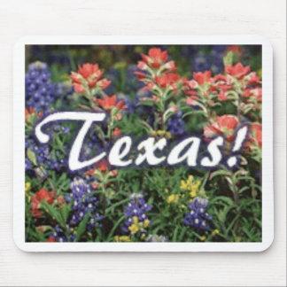 Texas Bluebonnets Paintbrushes Mouse Pad