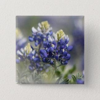 Texas Bluebonnets Photograph Series #5 Pinback Button
